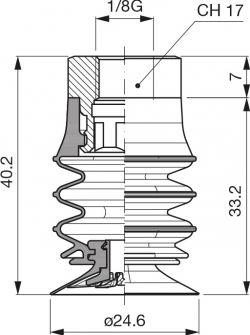 VES2596